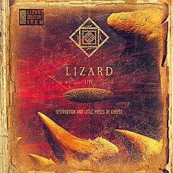 LIZARD DESTRUCTION AND LITTLE PIECES OF CHEESE cover